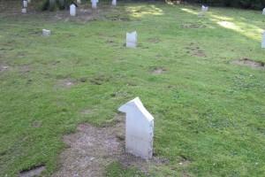 Cimetière militaire franco-allemand Guebwiller (Alsace) après profanation Deutsch-französischer Soldatenfriedhof Guebwiller (Elsass) nach der Schändung