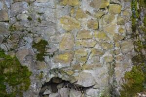 mur suisse lippique